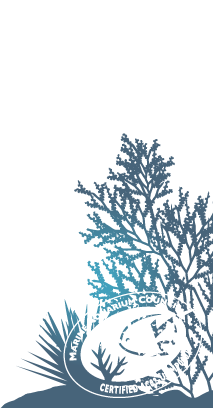 Marine Aquarium Council Certified